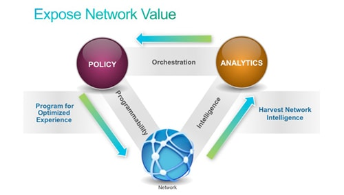 expose network value