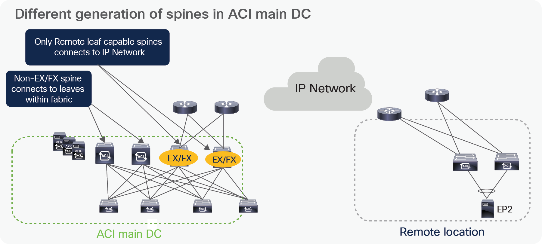 Title: Different generation of spines in ACI main DC
