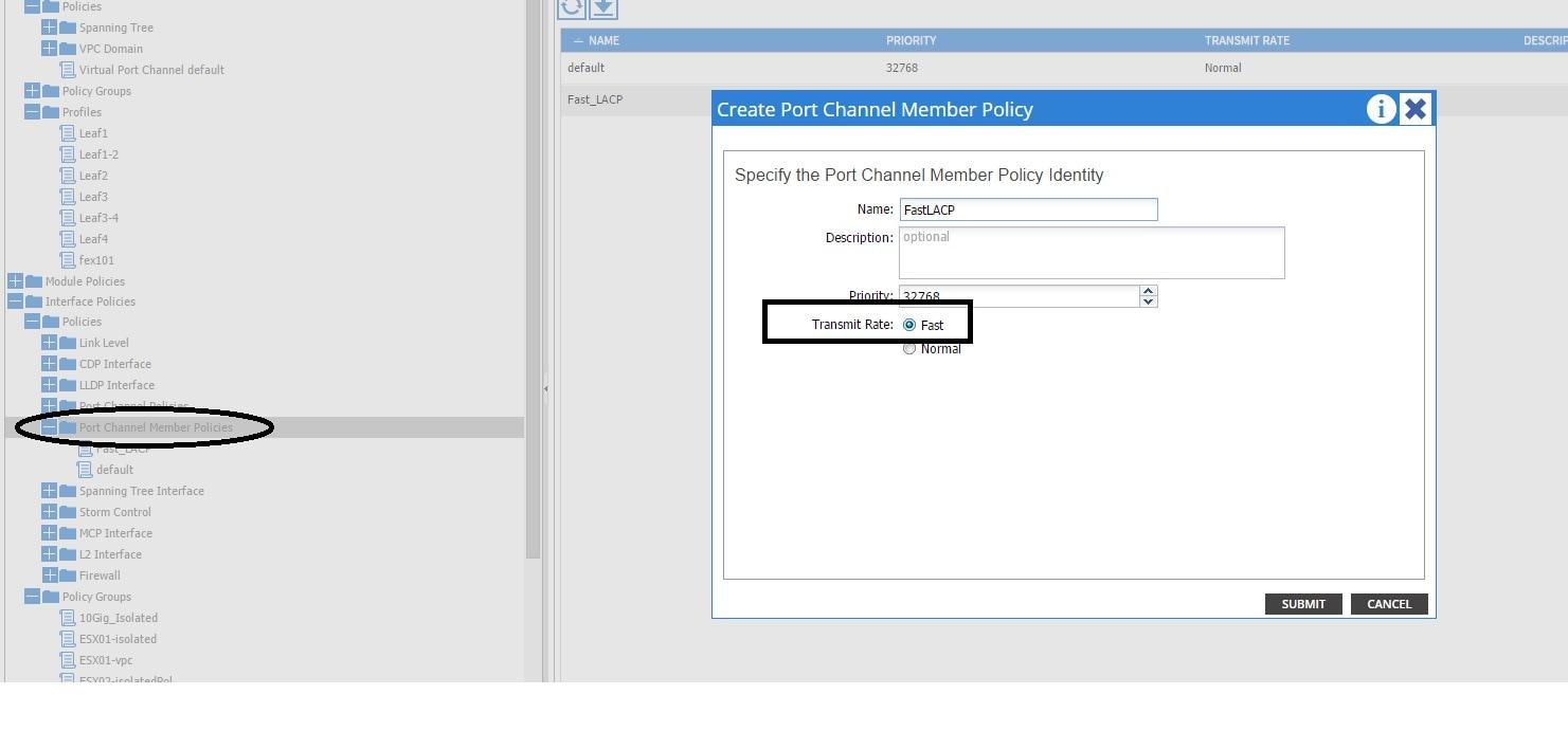 Configure Fast LACP Timer in ACI - Cisco