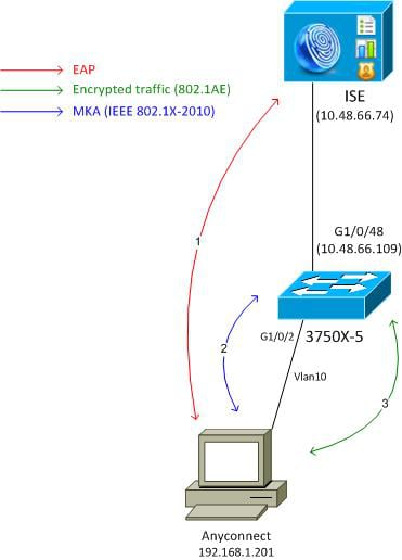 MACsec Switch-host Encryption with Cisco AnyConnect and ISE ...