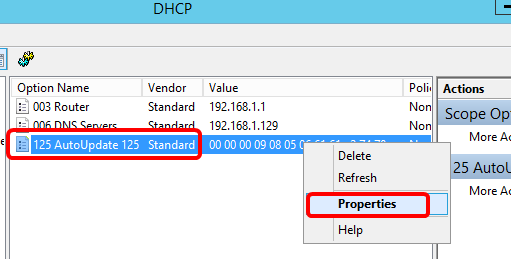 Configure Option 125 on a Server to Allow Dynamic Host Configuration