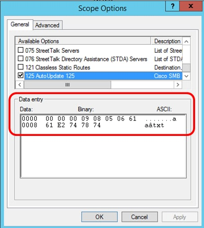 Configure Option 125 on a Server to Allow Dynamic Host