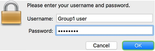 Enter your server username and password in the respective fields and then click OK.
