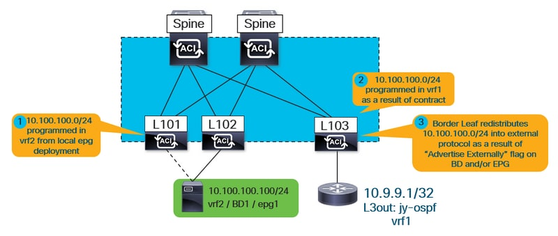 Troubleshooting Unexpected Route Leaking In Aci Cisco