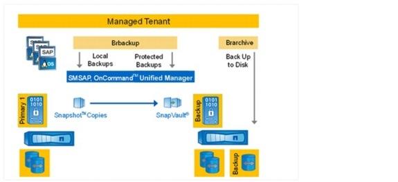 SAP Applications Built on FlexPod - Cisco