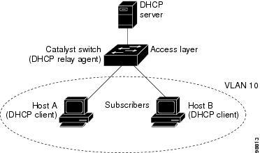 DHCP Relay Agent in a Metropolitan Ethernet Network