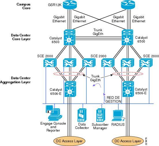 Using the Service Control Engine and Deep Packet Inspection