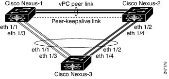 Switch-to-switch vPC topology