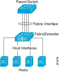 An EtherChannel fabric interface bundles connections into a single logical channel.