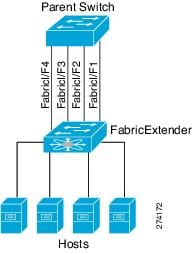 Individual fabric interfaces are statically pinned between a Fabric Extender and its parent switch.