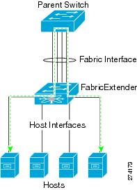 Traffic between two hosts connected to the Fabric Extender is forwarded through the parent switch.