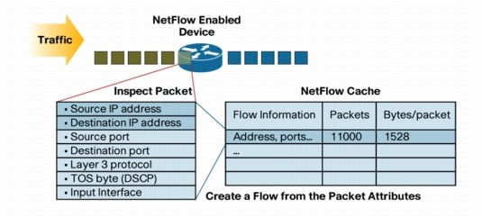 NetFlow Key Parameters