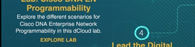 Lab: DNA Enterprise Network Programmability
