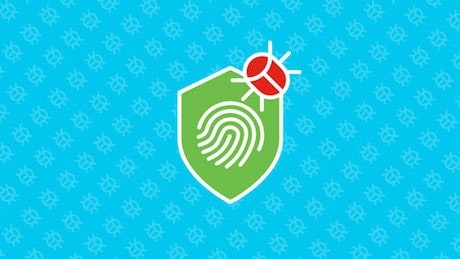 small and medium business security solutions