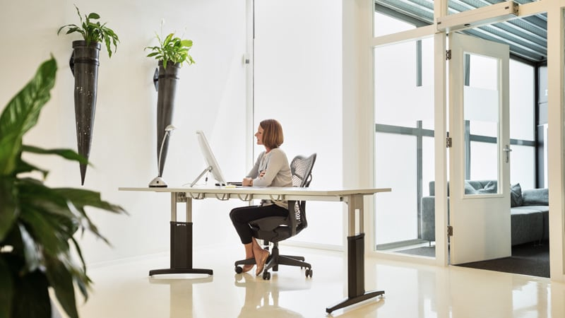 Trusted Workplace: Get Back to Business with Cisco DNA Spaces