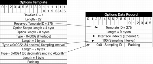 Netflow version 9 flow record format ip application services example 2 maxwellsz