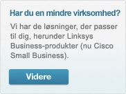 Got Small Business? Go to Cisco Small Business Products