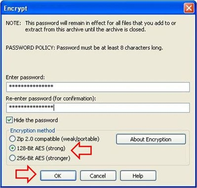 Fig 7 Encrypt the File