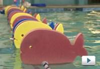 La Petite Baleen